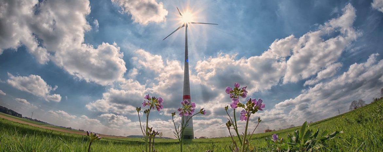 Opis i oszacowanie przedsiębiorstwa spółki z branży energetycznej dla potrzeb przygotowanej likwidacji (pre-pack)